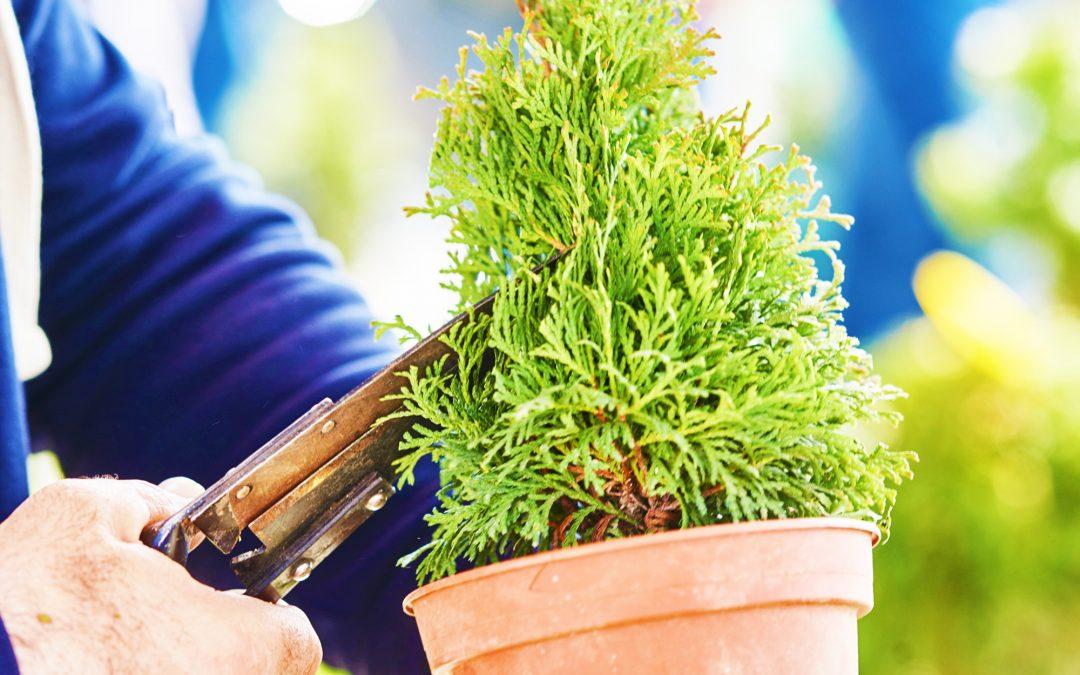 HOROP-Sajam opreme za hortikulturu