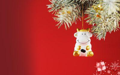 Bjelovarski sajam wishes you a Merry Christmas!